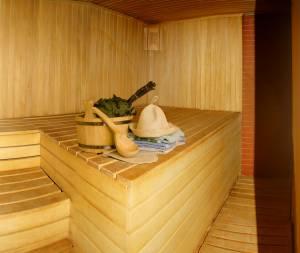 Sauna_3_300x253