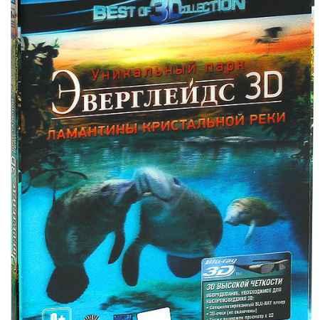 Купить Эверглейдс 3D и 2D: Ламантины Кристальной реки (Blu-ray)