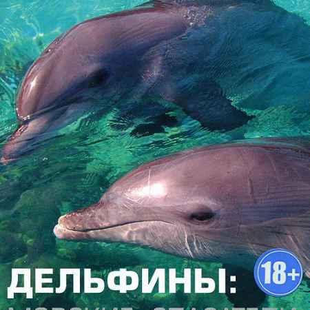 Купить ВВС: Дельфины: Морские спасатели