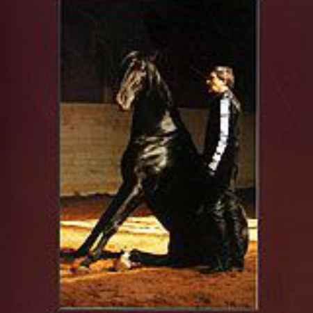 Купить Александр Невзоров: Правдивая история лошади от начала до современности. Послешкольный период