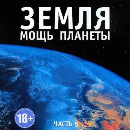 Купить BBC: Земля: Мощь планеты. Уникальная планета. Часть 5