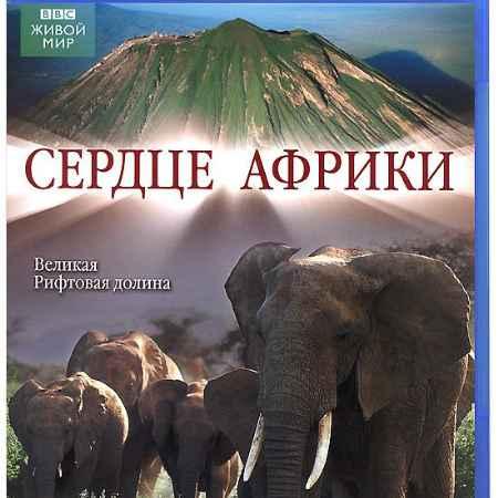 Купить BBC: Сердце Африки (Blu-ray)