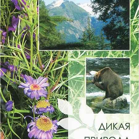 Купить Дикая природа Аляски