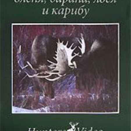 Купить Охота на медведя, оленя, барана, лося и карибу. Фильм 12
