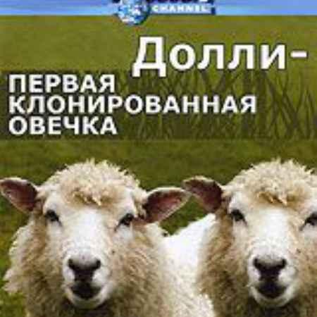 Купить Discovery: Долли - первая клонированная овечка
