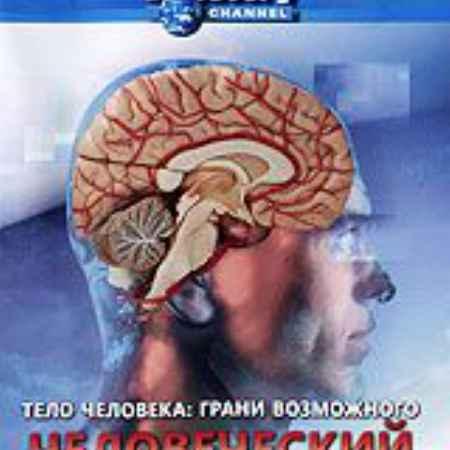 Купить Discovery: Тело человека: Грани возможного. Человеческий мозг