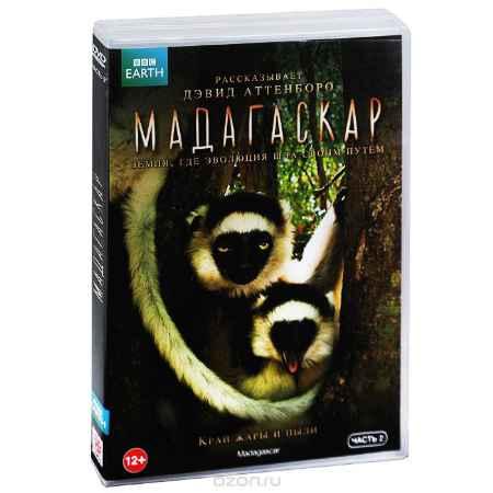 Купить BBC: Мадагаскар, часть 2