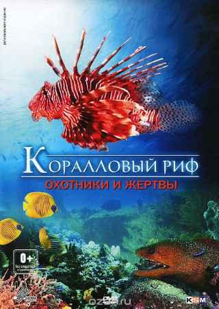 Купить Коралловый риф: Охотники и жертвы