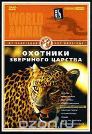 Купить Мир животных: Охотники звериного царства