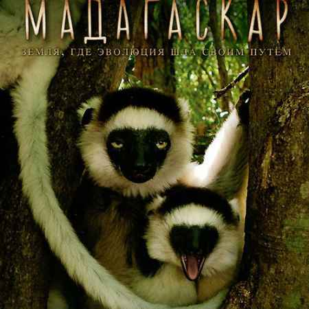 Купить BBC: Мадагаскар, часть 1