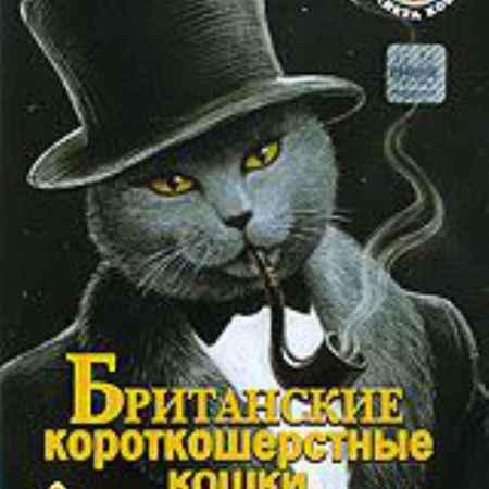 Купить Планета кошек: Британские короткошерстные кошки