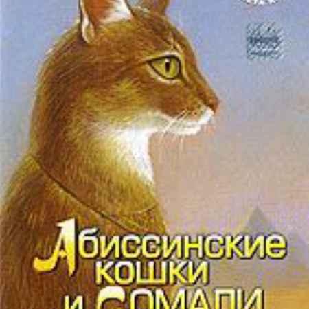 Купить Планета кошек: Абиссинские кошки и Сомали