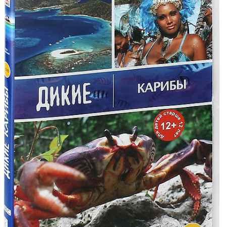Купить BBC: Дикие Карибы (2 DVD)
