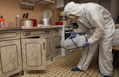 Как уничтожить тараканов в квартире навсегда